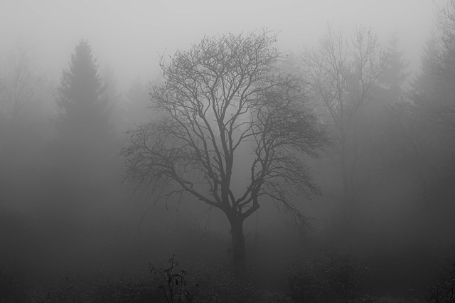 Depressing tree